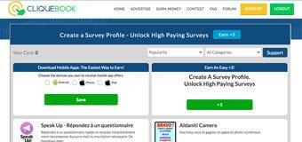 Cliquebook Surveys