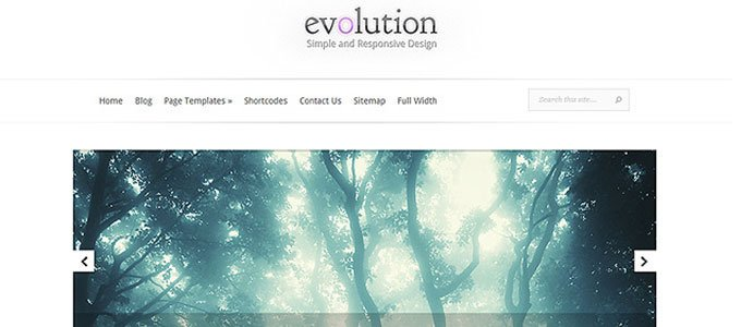 Evolution Theme WordPress